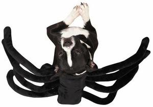 zack-zoey-grr-antula-costume-medium-5_201311010520484e6.jpg