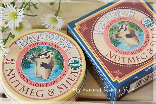 Badger Company, Every Day Body Moisturizer, Nutmeg & Shea