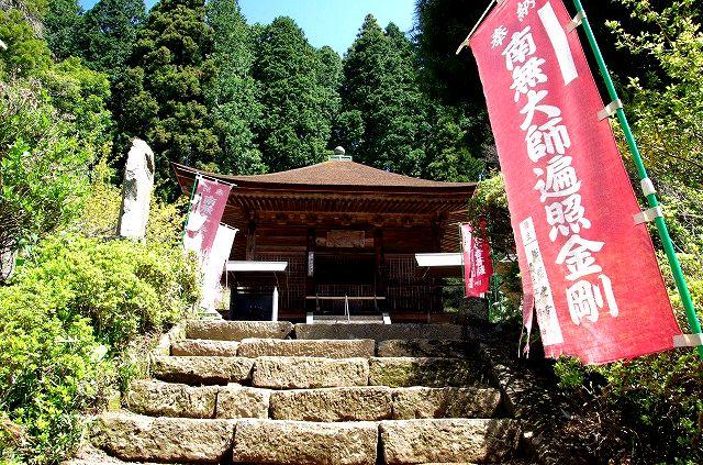 神角寺の石楠花