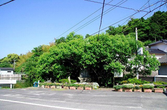 逆柳(姫島村)