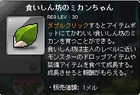 Maple130927_104507.jpg