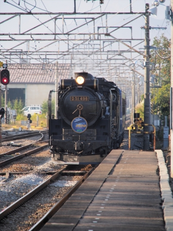 D51 498 蒸気機関車