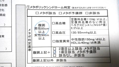 P1070472 - コピー