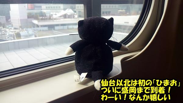 にゃぽ旅1-3