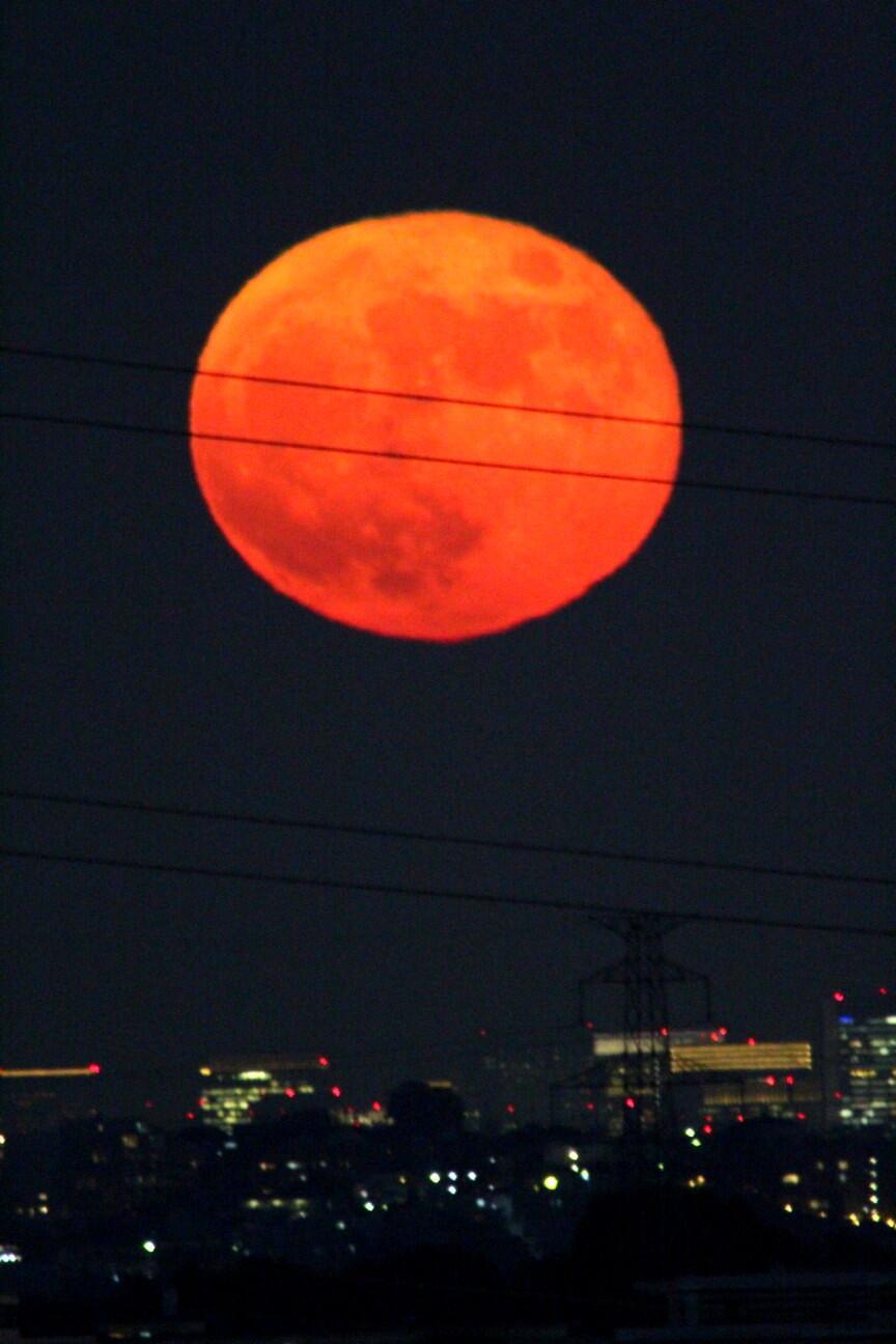 昨夜は月がとても赤かったと話題に