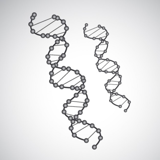 遺伝子検査でわかる自分のルーツ 見ず知らずの米国人が「親戚」だった!
