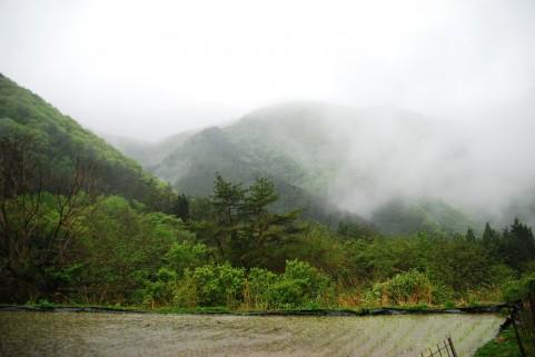 気味悪い夢を見たんで書いとく・・・富士山