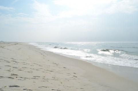遠州灘での震度4の地震 東海地震の場所とほぼ一致か