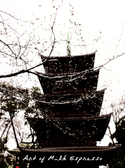 sakura1buzaki.jpg