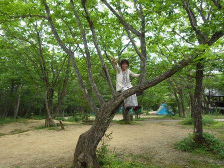 24木登り