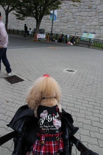 だんじり祭i n 大阪城2 0 1 3