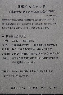 IMG_4205.jpg