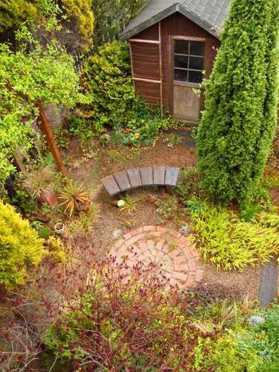 my-garden 013