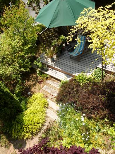 my-garden 048