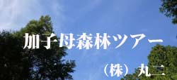 加子母森林ツアー