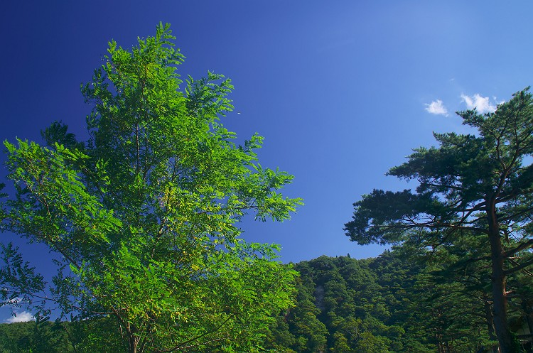 鳴子峡 2