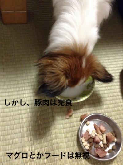 fc2blog_20140924205454e0d.jpg