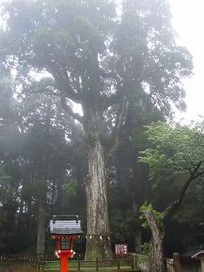 2013-6-22鹿児島 4
