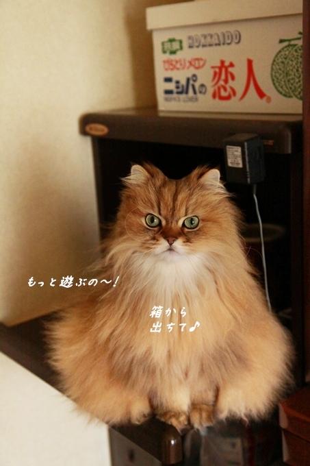23_20130506083032.jpg