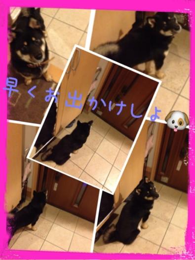 fc2blog_2013102322122399a.jpg