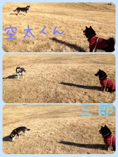 fc2blog_201311241628155e8.jpg