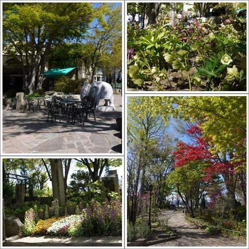 ハーブ庭園17