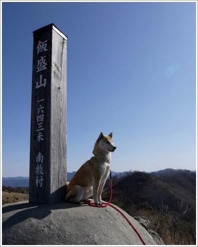 飯盛山11