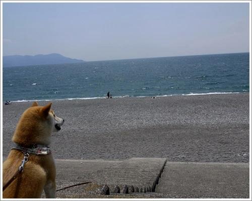 千本浜公園からの海