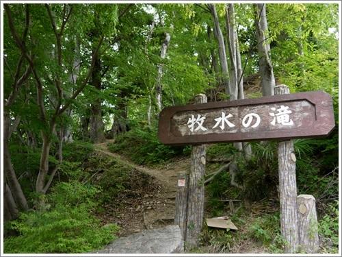 羊山公園10