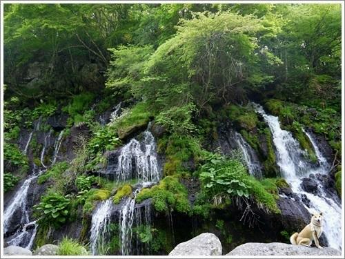 吐竜の滝10