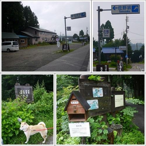 姫川源流・親海湿原1