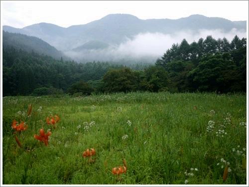 姫川源流・親海湿原5