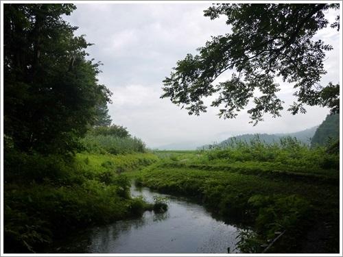 姫川源流・親海湿原15