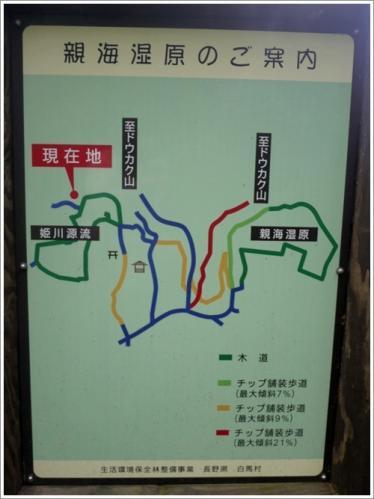 姫川源流・親海湿原20