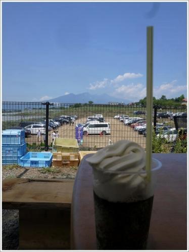 ひまわり畑5