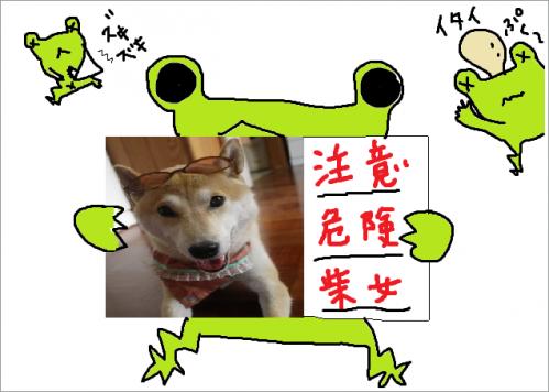 さくらと蛙7