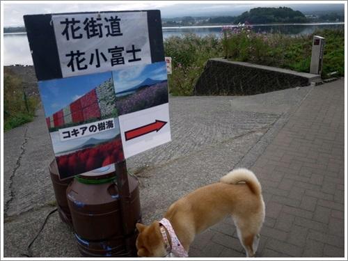 大石公園6
