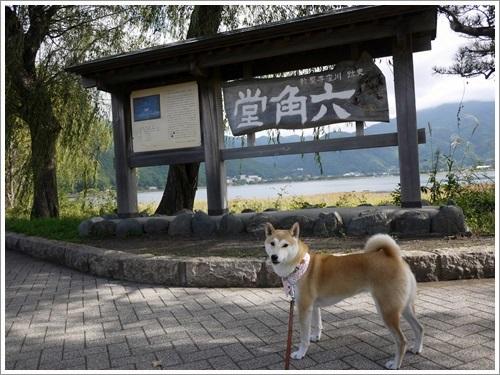 八木崎公園2