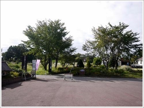 八木崎公園14