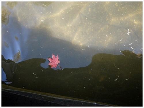 女神湖13
