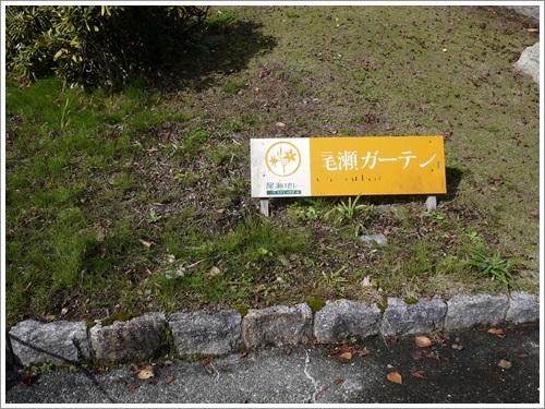 花の谷公園2