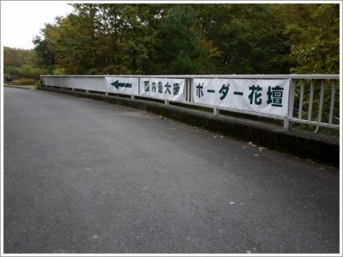 2人2ワンで歩く国営武蔵丘陵森林公園・その3