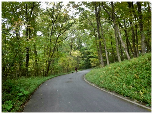2人2ワンで歩く国営武蔵丘陵森林公園・その4