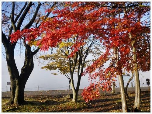 河口湖紅葉祭り36