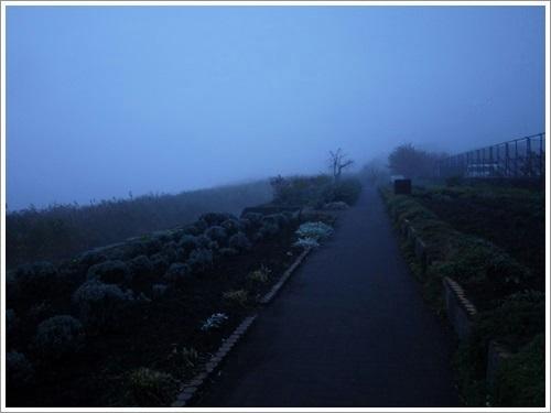 大石公園3