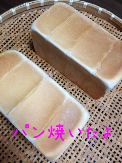 fc2blog_2013062623480385a.jpg