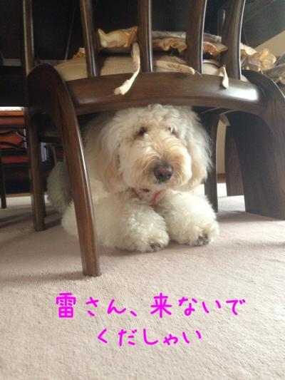 fc2blog_20130709201539a97.jpg