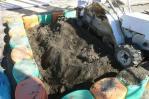 周りを掘りながら砂場清掃篩機を動かす