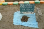 砂場のごみ