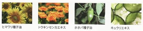 レクシア オラクル花のコスメお試しセットが、新しくなりました!